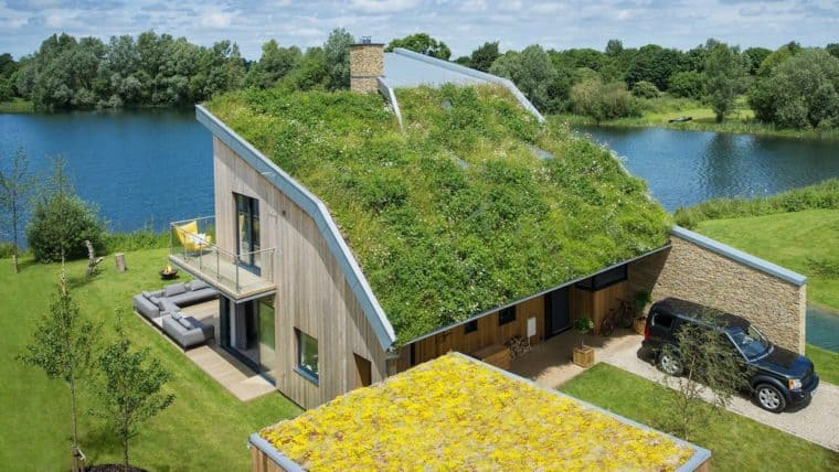 an eco-friendly home turns its roof into a bedding for vegetation life making the home more insulated and cool at the same time.