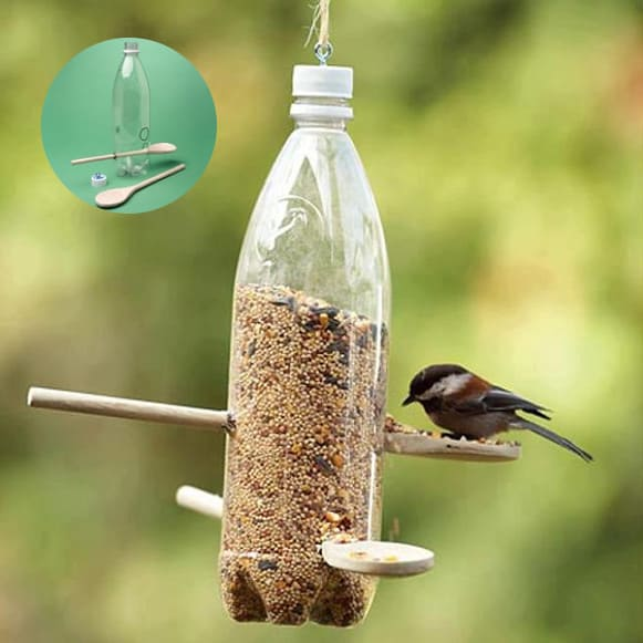 a diy bottle bird feeder.