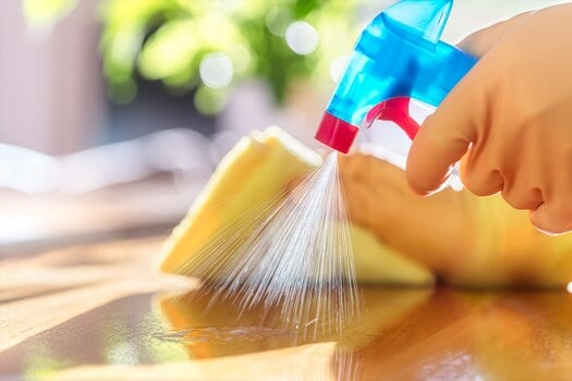 atlanta maid spraying surface with cleaning solution