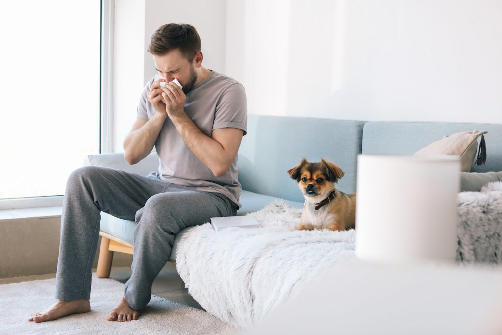 man sitting on couch with dog sneezing